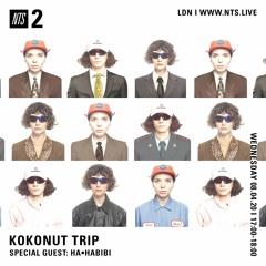 MIX FOR NTS RADIO (KOKONUT TRIP) 08.04.2020