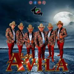 Los Avila | La Basurita - Si El Destino - 37 Semanas