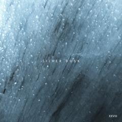 DHB Premiere: about : river - Silver Dusk [Nie Wieder Schlafen]