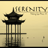 Serenity Relaxing Spa Music, 101 Minutes, Sound Therapy for Relaxation Meditation with Sounds of Nature & Natural White Noise Songs: Asian Zen New Age Ambiance for Baby Deep Sleep, Study, Massage, Yoga