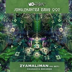 Jungle Mantra Radio 002 | Zyamaliman (Dj set)