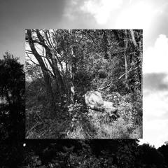 Obscured (prod. kejzi)
