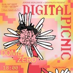 JEROME WORLDWIDE DIGITAL PICNIC - DOME ZERO