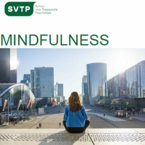 Sanne Willers over Mindfulness