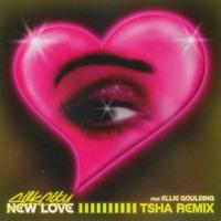 Silk City & Ellie Goulding feat. Diplo & Mark Ronson - New Love (TSHA Remix)