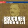 Symphony No. 5 In B Flat Major - Adagio