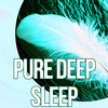 Pure Deep Sleep – Relax, Meditation Music, Serenity Music, Relaxing Nature Sounds, Sleep Therapy, Sleep Music, Lullabies