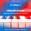 Little Bit of Love (Lower Male Key - Originally Performed by Tom Grennan) (Piano Instrumental Version)
