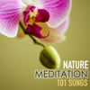 Nature Meditation 101 - Relaxing Serenity Spa Music of Relaxation, Zen Songs for Sound Therapy, Asian White Noise Sounds with New Age Ambience, Baby Deep Sleep Natural Ambient for Study, Massage and Hatha Yoga