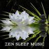 Rainforest Natural Sleep