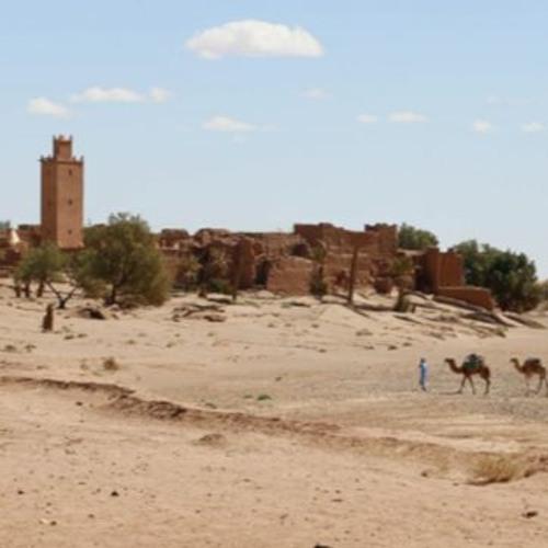 La adaptación al cambio climático en la región MENA: prácticas y lagunas (ESPAÑOL)