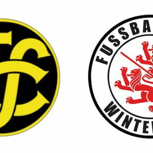 Runde 21: FC Schaffhausen – FC Winterthur 1:0