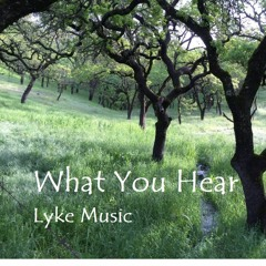 What You Hear