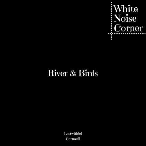River & Birds Lostwithiel Cornwall One Hour