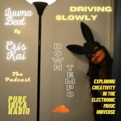 Luuma Beat the Podcast Episode 5 *Downtempo 105 *Driving Slowly*