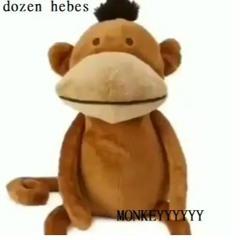 dozen hebes - MONKEYYYYYY