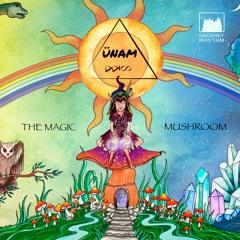 ÜNAM - Psylocibin Is Your Friend