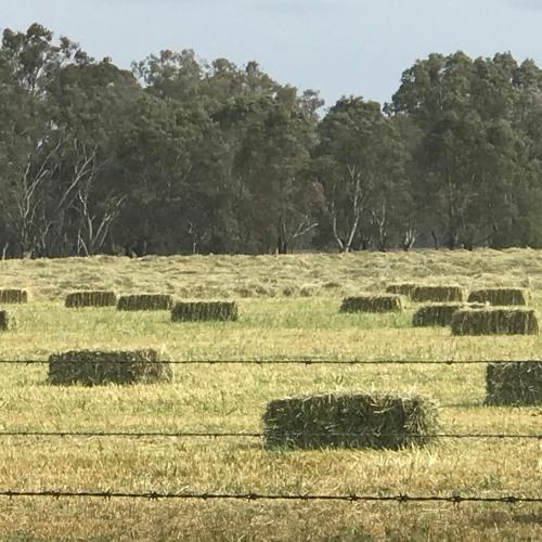 Farming before gas mining