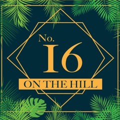 Live @ No.16 on the Hill