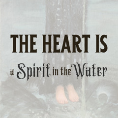 The Heart Is a Spirit in the Water: Swimming through complexity