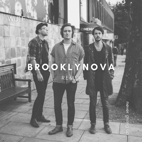 Never Giving Up (Brooklynova Remix)