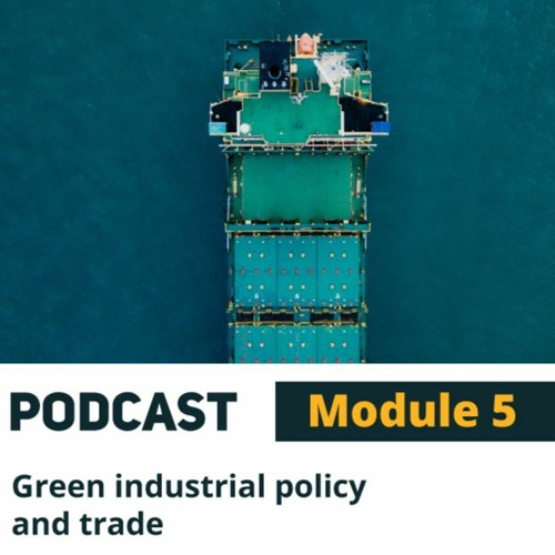 Green Industrial Policy and Trade with Colette van der Ven