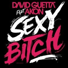 David Guetta feat. Akon - Sexy Bitch (FGW Dirty 8-Bit Rework)