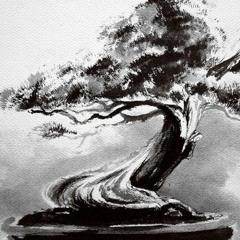 Sentic Cycle - Bonsai