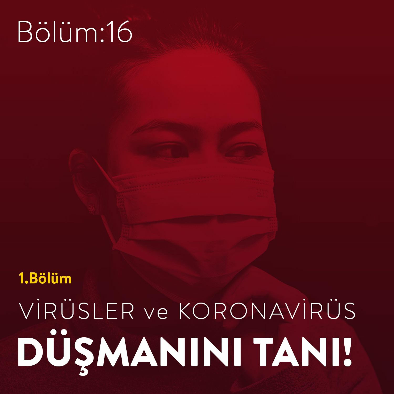#16 - Düşmanını Tanı! Virüsler ve Koronavirüs / 1. Bölüm