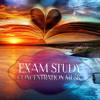 Exam Study (Waterfall & Gentle Piano)