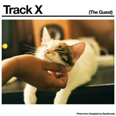 Black Country, New Road - 'Track X (The Guest)'