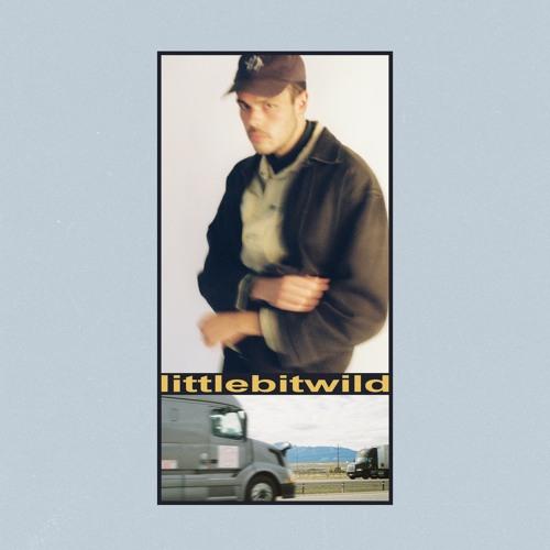 littlebitwild (feat. mallrat) Image