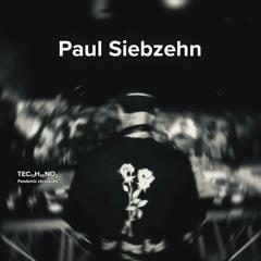 Pandemic chronicles – Paul Siebzehn