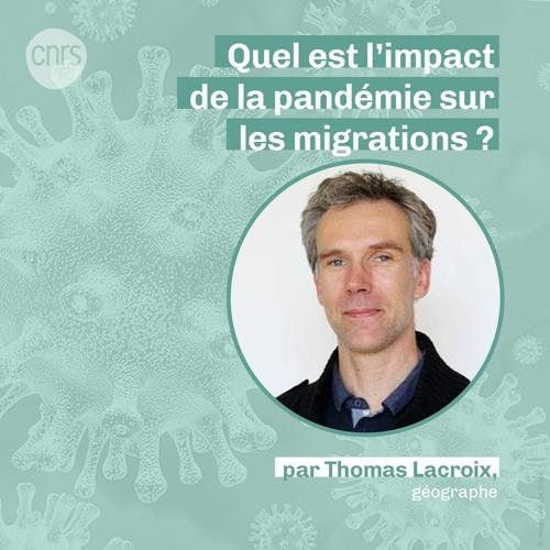 Quel est l'impact de la pandémie sur les migrations ? par Thomas Lacroix