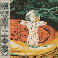 Mente Organica - El Espacio LP (EARTHLY006)