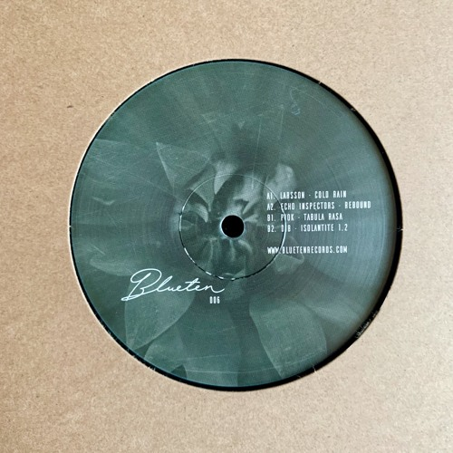 Blueten 006 V.A. - A2. Echo Inspectors - Rebound