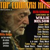 Download Top Country Hits Especial Willie Nelson Con Raúl Tejeiro Mp3