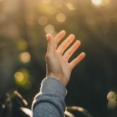 Il desiderio d'ogni essere - Salmo 145:16