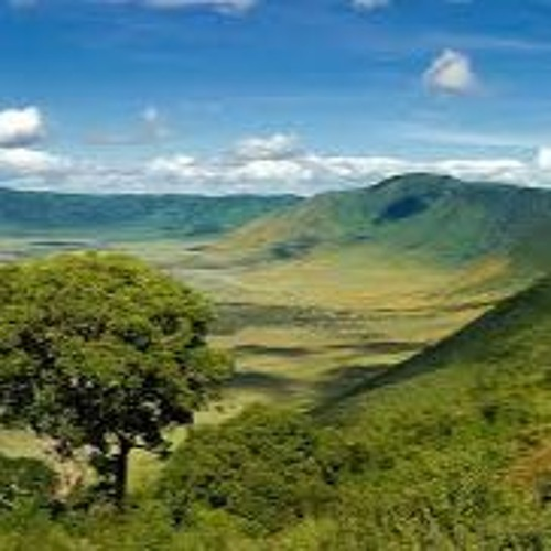 Africa, the environment & China in Africa