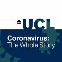 Coronavirus The Whole Story By Ucl