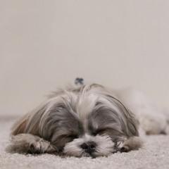 Sense of loss after a nap/Gyan