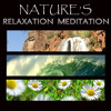 Relaxing Free Birds Singing Relaxing Spa Music MP3 Track (Nature Sounds for Spa and Yoga, and Soothing Music)