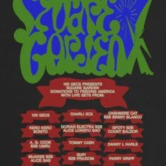 For 100 Gecs Square Garden Festival set