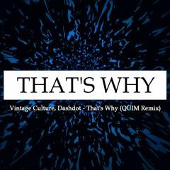 Vintage Culture, Dashdot - That's Why (QÜIM Remix) [FREE DL]
