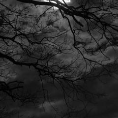 Shiloh Dynasty x XXXTENTACION type beat - Watch the Moon (Prod. GoodSan)