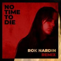 Billie Eilish -  No Time To Die (Rok Nardin Remix)