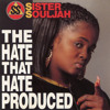 The Hate That Hate Produced (Instrumental)