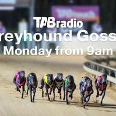 May 31 Greyhound Gossip