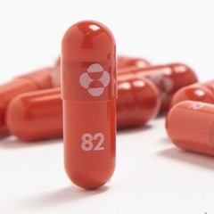 Antiviral Pill, Molnupiravir, Latest Weapon Against Covid-19 (18.10.21)