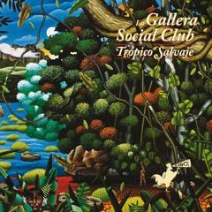 Moroka Jia - La Gallera Social Club